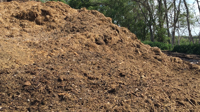 manure soil phosphorus p