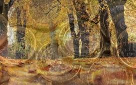 День осеннего равноденствия 22 сентября 2020 года: избавляемся от проблем и бедности