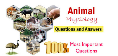 Animal physiology questions