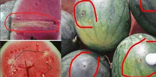 Mẹo phát hiện dưa hấu tiêm thuốc bằng mắt thường