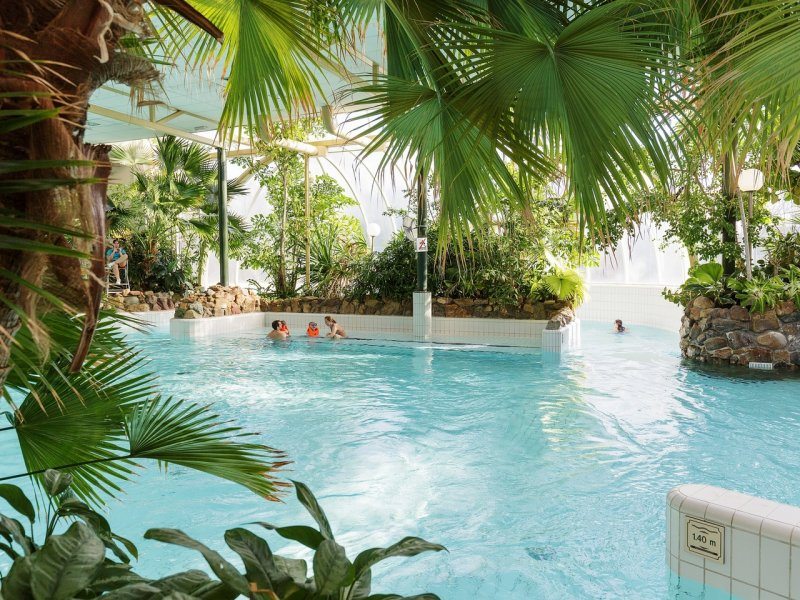 Choosing the Best Center Parcs Holiday in the Netherlands  - Limburgse Peel Swimming pool