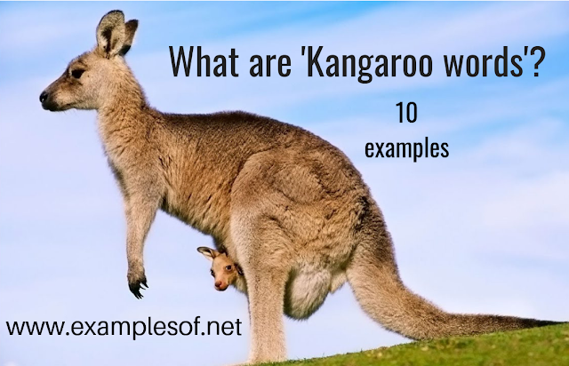 10 Examples of Kangaroo words