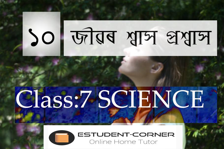 জীৱৰ শ্বাস প্ৰশ্বাস || Class 7 || SCIENCE || Lesson 10 || SCERT || In Assamese Medium