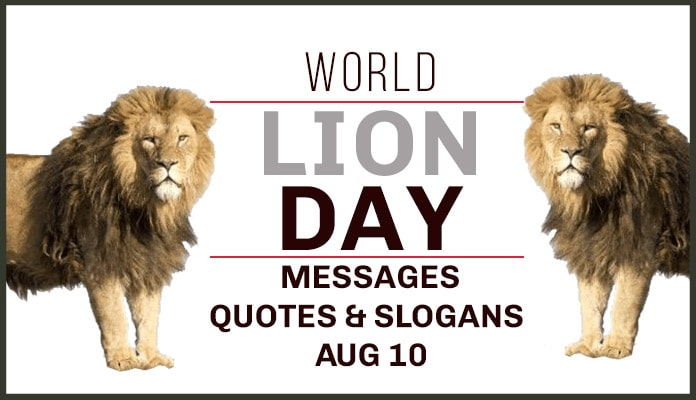 world lion day,lion day,world lion day 2020,international lion day,lion day 2020,national lion day,world lion day theme 2020,happy world lion day,international lion day 2020,national lion day 2020,world lion day wikipedia,world lion day 2020 theme,world sea lion day,world lion day 2019,world lion day images,world lion day history,the lion day