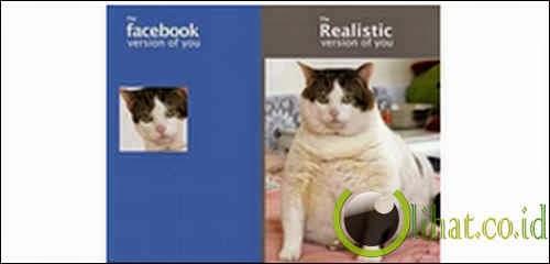 Kucing Butuh Diedit