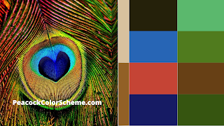 peacock color scheme, peacock color images