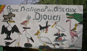 Le parc national des oiseaux du Djoudj, un site exceptionnel  : Parc, Djoudj, visite, Saint-Louis, patrimoine, mondial, Unesco, tourisme, sauvage, oiseaux, réserve, île, protection, environnement, nature, écosystème, LEUKSENEGAL, Dakar, Sénégal, Afrique