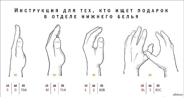 Как правильно выбрать лифчик по размеру фото