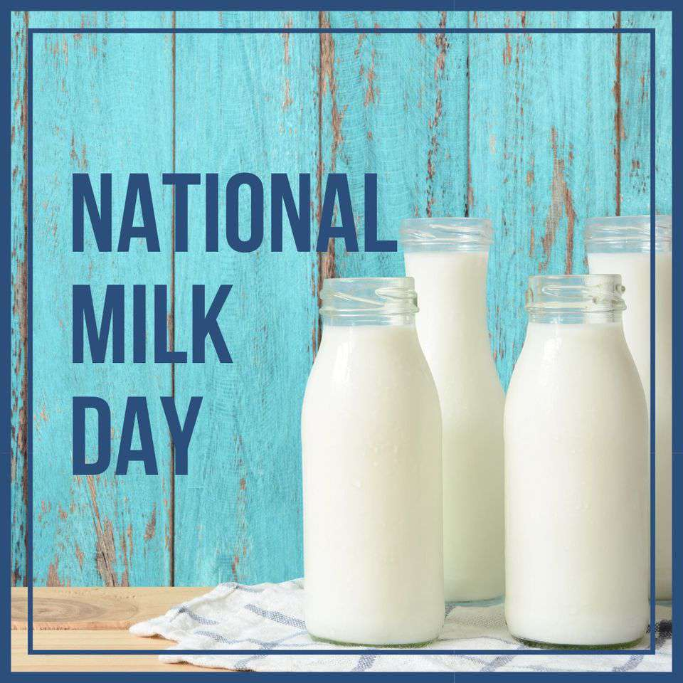 National Milk Day Wishes Awesome Images, Pictures, Photos, Wallpapers