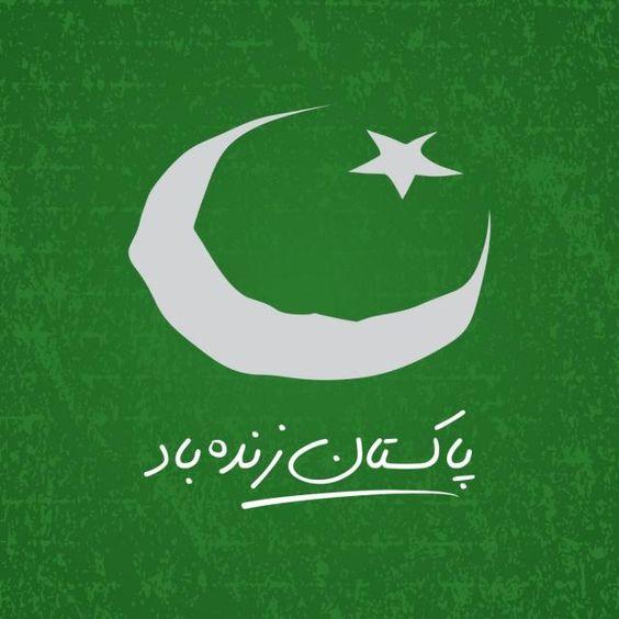Pakistani%2BFlag%2BHoly%2BDay%2B%252840%2529