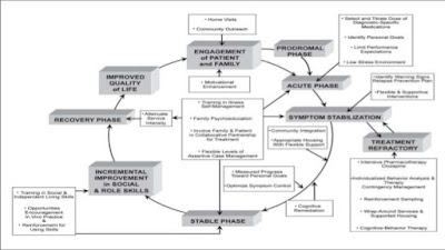 Early Intervention in Psychosis Framework