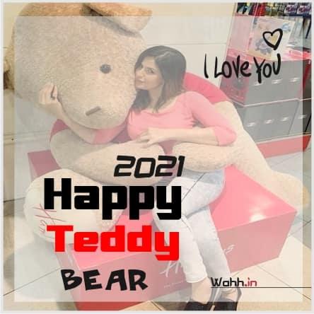 2021 Teddy Bear Status in Hindi