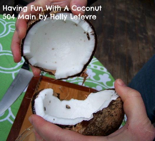 Have Fun with a Coconut 504 Main