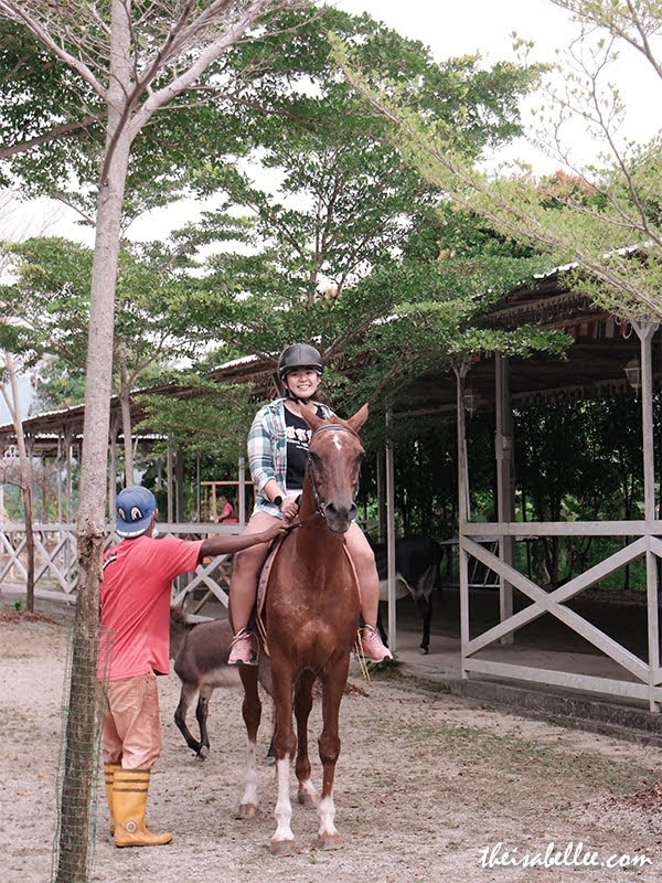 Countryside Stables Penang horse riding