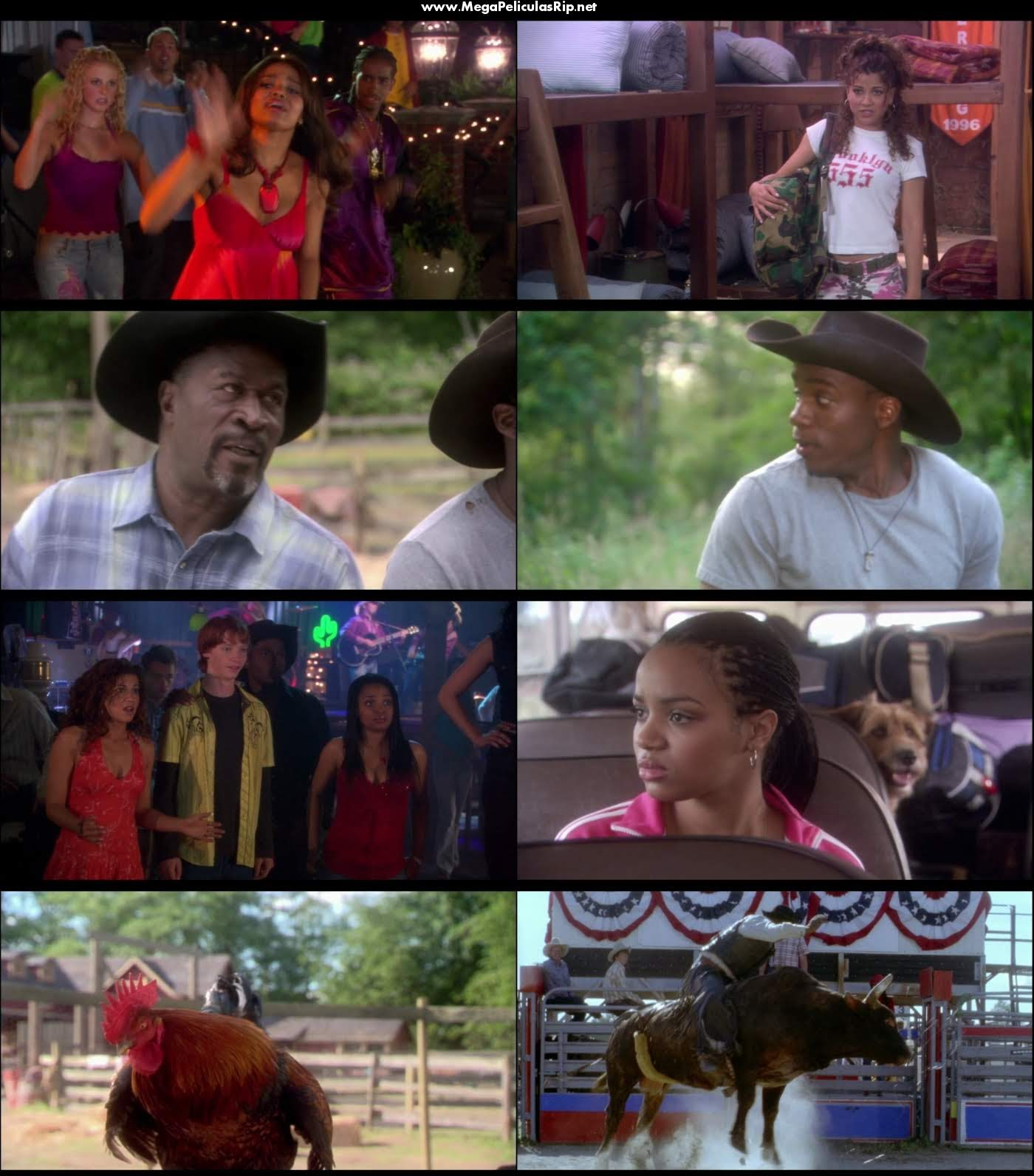 Dr Dolittle 3 1080p Latino
