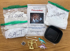 Paleontology take-home kit for kids
