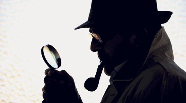 dedektif ne kadar kazanıyor