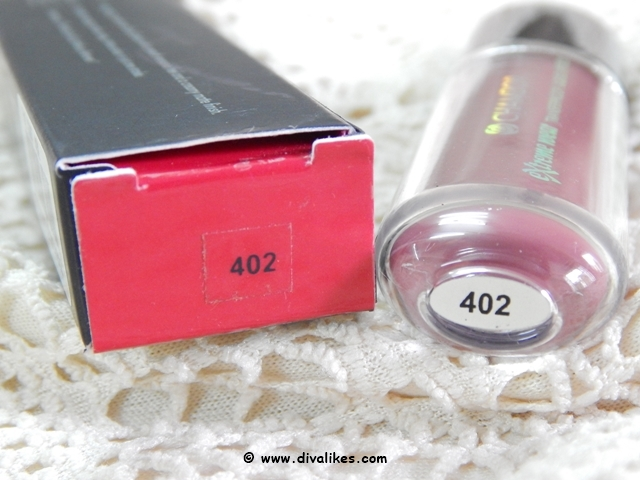 Chambor Extreme Wear Transferproof Liquid Lipstick 402 Shade