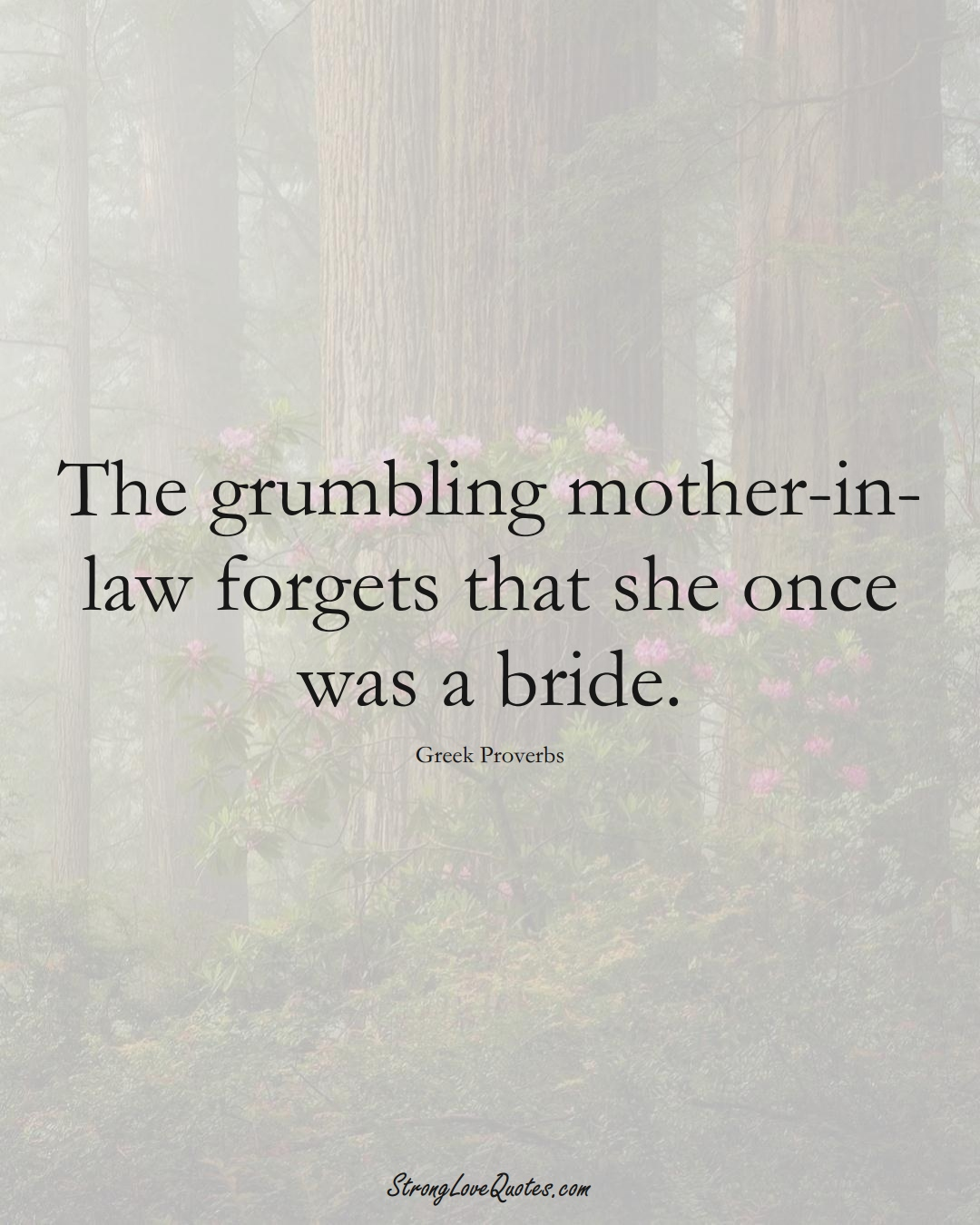 The grumbling mother-in-law forgets that she once was a bride. (Greek Sayings);  #EuropeanSayings