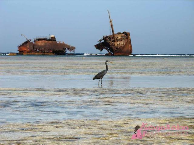 اهم الاماكن السياحية في مصر لعام 2021