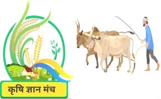krishi gyan kendra,krishi gyan online test,krishi knowledge,krishi portal,