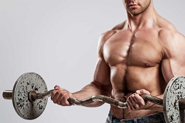 Top Ten Foods for Muscle Building