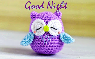 Good night have a sweet dreams with woolen owl