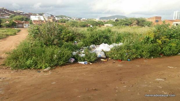 Moradores reclamam de matagal em terreno baldio juntando lixo, insetos e cobras, em Santa Cruz do Capibaribe