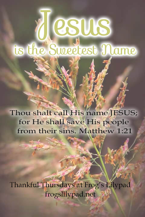 Jesus is the Sweetest Name: A mighty name, a powerful name, Jesus is the Sweetest Name I Know. He fights our battles; He is our Leader, our Protector, and He is our Saviour. Thankful Thursdays linkup at frogslilypad.net