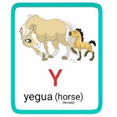 y- alphabet in spanish
