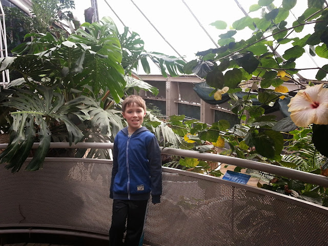 The Rainforest at Bristol Aquarium