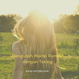 toning_rambut_alami