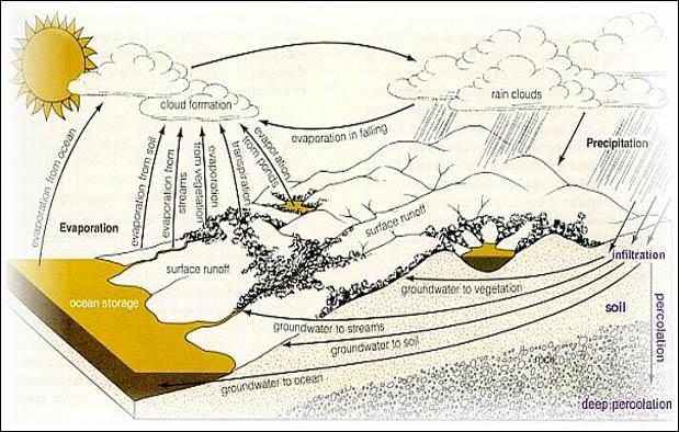 Ketersediaan air di daratan bumi dapat tetap terjaga karena adanya hujan Siklus Hidrologi, Pengertian, Proses, Gambar, dan Penjelasannya