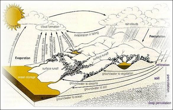 Siklus Hidrologi, Pengertian, Proses Tahapan, Macam, Gambar, dan Penjelasannya