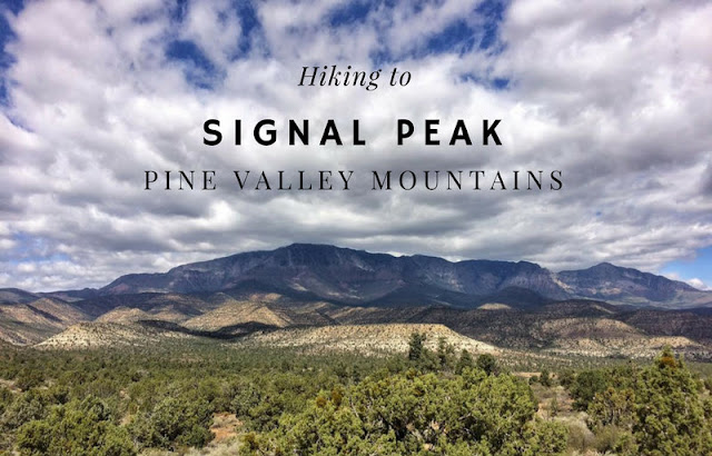 Hiking to Signal Peak, Pine Valley Mountains