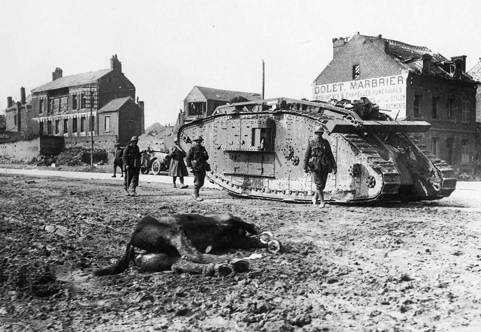 A British Mark V tank passes by a dead horse in the road in Peronne, France in 1918.