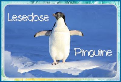 http://endlich2pause.blogspot.de/2014/06/lesekiste-pinguine.html