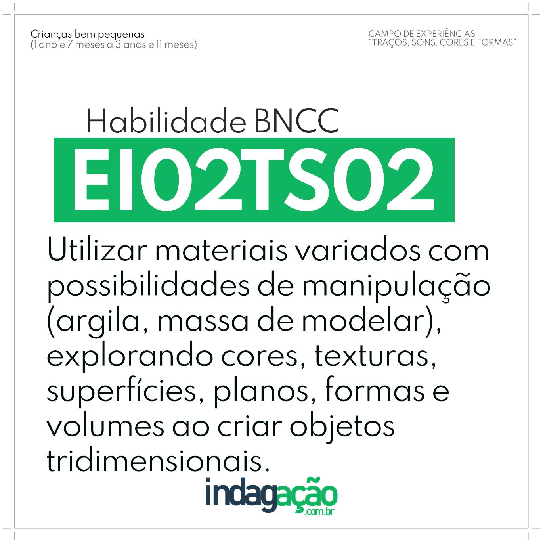 Habilidade EI02TS02 BNCC