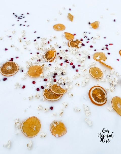 orange slice wrinkled cranberry snow
