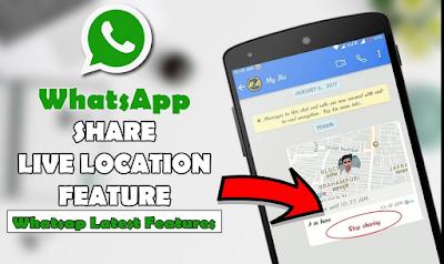 Cara Menggunakan Fitur Share Live Location Di WhatsApp, Begini Caranya