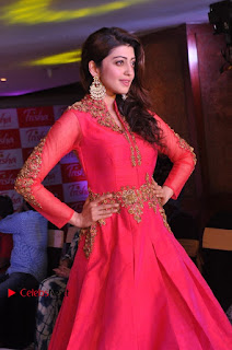 South Indian Celebrities Pos at Love For Handloom Collection Fashion Show  0049.jpg