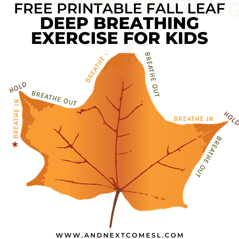 Fall Leaf Deep Breathing Exercise Free Printable Poster Included And Next Comes L Hyperlexia Resources