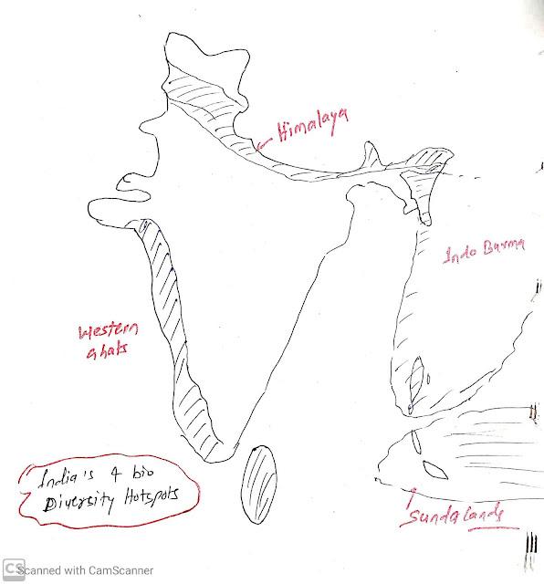 Biodiversity hot spots of India