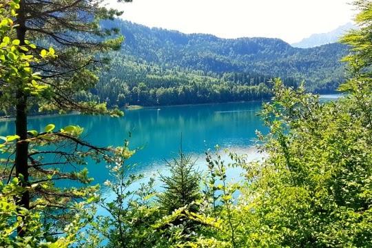 Alpsee, Bavaria