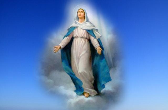 Maria Bunda Pilihan