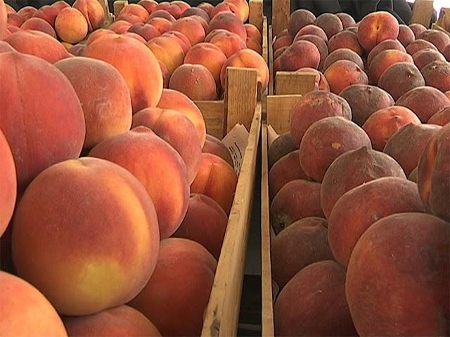 В регионах Грузии в период сбора урожая фруктов вырос спрос на рабочую силу.