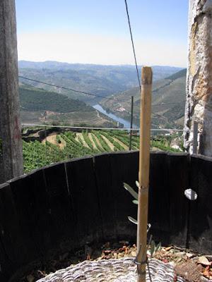 Antigo lagar do Vale do Douro