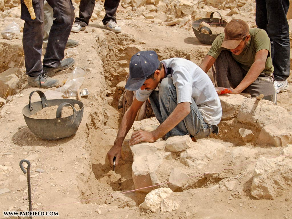 Archaeology study of human life