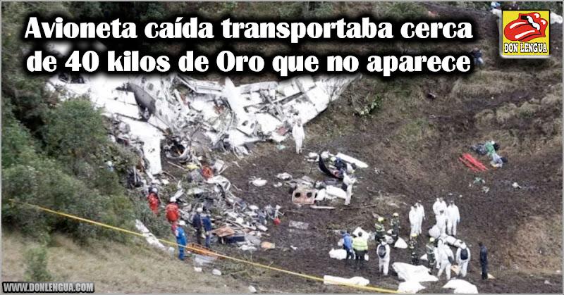 Avioneta caída transportaba cerca de 40 kilos de Oro que no aparecen