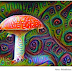 Cogumelos mágicos podem ser a solução da depressão?